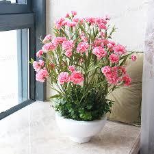 Free Shipping Flowers Aliexpress Com Buy 200 Pink Carnation Seeds Beautiful Garden