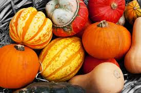 free images nature fall food harvest produce vegetable