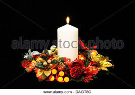 flowers and berry lights against a black background