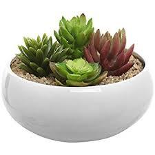 amazon com 3 5 inch small round modern white ceramic succulent