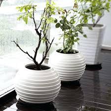 Round Flower Vases Contemporary Flower Vases U2013 Affordinsurrates Com