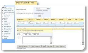 sharepoint timesheet online time entry timecard tracking template