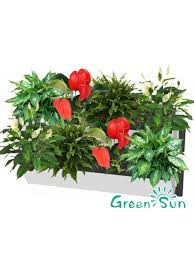 self watering hydroponic grow systems vertical green wall