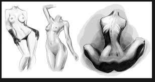 female anatomy study by solfei on deviantart