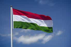 Standing Flag Banners Hungary Moves To Boost Its Higher Education Standing Times