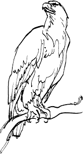 best of bald eagle coloring page elegant coloring pages template