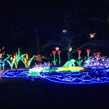 garvan gardens christmas lights 2017 map of the place picture of garvan woodland gardens springs