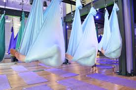 aerial yoga teacher training get trained by the originators