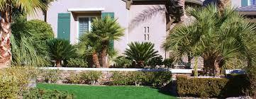 las vegas landscape company maintenance and design desert