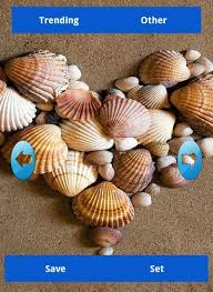 seashell wallpapers android apps on google play