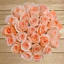 bulk roses bulk roses ebloomsdirect