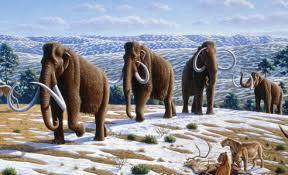 climate craziness week agu peddles mammoth climate