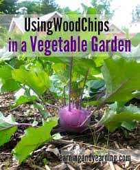 using wood chips in a vegetable garden