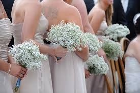 baby s breath bouquets babys breath bridesmaid bouquets the sweetest occasion