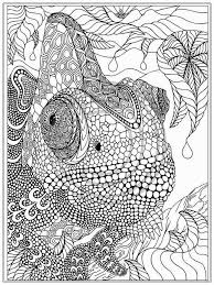 print out coloring pages for adults fablesfromthefriends com