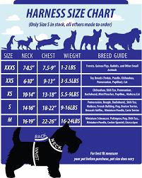 spirit halloween size chart xxxs m size harness dog cat black dragon halloween costume
