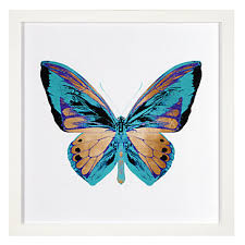 metallic butterfly gifts for collections z