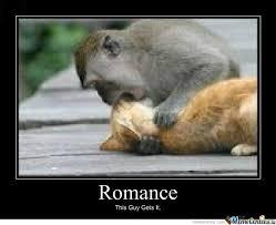 Romantic Memes - internet memes page 230