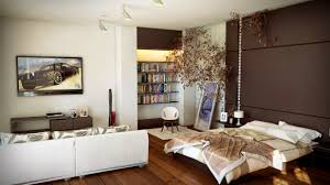 1 room apartment bedroom and living room in one decoration and ideas how to