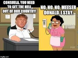 Memes Family Guy - best of memes family guy family guy consuela memes images kayak