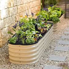 vegetable garden layout tips
