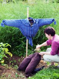 how to make a scarecrow how tos diy