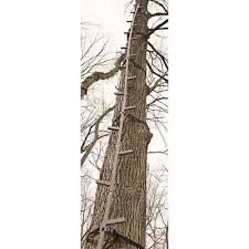 tree easy setup guide gear climbing angle steps stick ladder 20