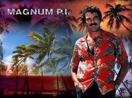 magnum pi year magnum p i 1981 no need to skin the mind reels
