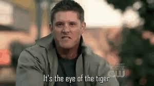 Eye Of The Tiger Meme - eye of the tiger meme gifs tenor