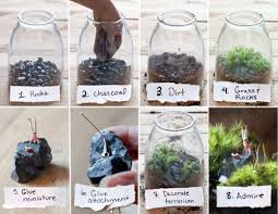make your own beautiful terrarium u2013 10 inspiring ideas