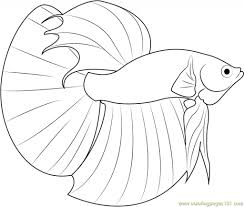 betta fish coloring free fish coloring pages