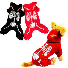 compare prices on dog skeleton halloween online shopping buy low