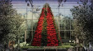 Botanical Gardens Atlanta Christmas Lights by Atlanta Botanical Garden Garden Lights 2015 Youtube