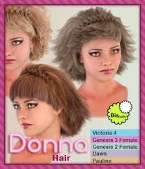 donna hair biscuits s store on renderosity