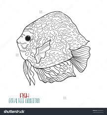 coral reef collection sea or aquarium fish outline vector