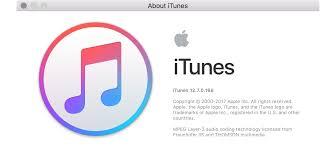 Bad Apple Lyrics Instant Expert Secrets U0026 Features Of Itunes 12 7 Ilounge Article