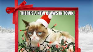 19 Awesome Grumpy Cat Christmas - season 1 mother may i sleep with podcast