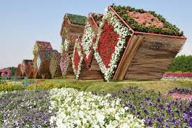 dubai miracle garden the most beautiful and largest flower garden