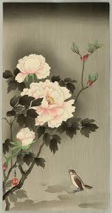 Japanese Flowers Pictures - best 25 japanese peony tattoo ideas only on pinterest japanese
