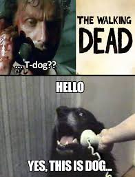 T Dogg Walking Dead Meme - yes this is dog the walking dead know your meme