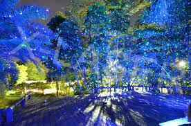 outdoor laser lights reviews outdoor laser lights wellnessleader info