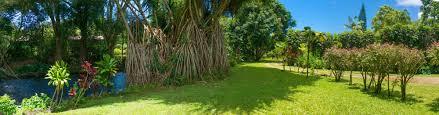 river estate kauai vacation rentals