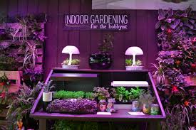 the garden plot indoor gardening poised to be the next big thing