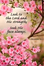 Seeking Que Significa Seek The Lord And His Strength Seek His Presence Continually 1