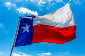 El Paso Texas Flag Texas 2017 Equine Infectious Anemia Report Business Solutions