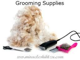 list of shih haircut shih tzu grooming supplies checklist
