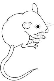 88 mice coloring pages free coloring