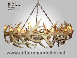 Cheap Rustic Chandeliers by Real Antler Round Mule Deer Elk Round Chandelier 14 Lights Rustic