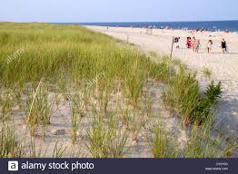 massachusetts cape cod nauset beach cape cod national seashore
