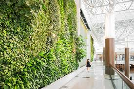 green over grey living walls and design canada green wall